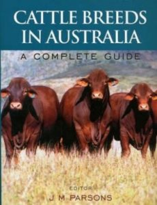 Cattle Breeds in Australia