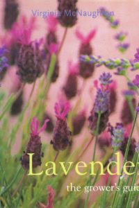 Lavender the Grower's Guide